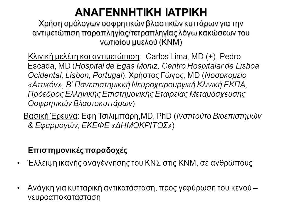 ANAΓΕΝΝΗΤΙΚΗ ΙΑΤΡΙΚΗ Χρήση ομόλογων οσφρητικών βλαστικών κυττάρων για την αντιμετώπιση παραπληγίας/τετραπληγίας λόγω κακώσεων του νωτιαίου μυελού (ΚΝΜ) Κλινική μελέτη και αντιμετώπιση: Carlos Lima, MD (+), Pedro Escada, MD (Hospital de Egas Moniz, Centro Hospitalar de Lisboa Ocidental, Lisbon, Portugal), Χρήστος Γώγος, MD (Νοσοκομείο «Αττικόν», Β' Πανεπιστημικκή Νευροχειρουργική Κλινική ΕΚΠΑ, Πρόεδρος Ελληνικής Επιστημονικής Εταιρείας Μεταμόσχευσης Οσφρητικών Βλαστοκυττάρων) Βασική Έρευνα: Εφη Τσιλιμπάρη,MD, PhD (Ινστιτούτο Βιοεπιστημών & Εφαρμογών, ΕΚΕΦΕ «ΔΗΜΟΚΡΙΤΟΣ») Επιστημονικές παραδοχές Έλλειψη ικανής αναγέννησης του ΚΝΣ στις ΚΝΜ, σε ανθρώπους Ανάγκη για κυτταρική αντικατάσταση, προς γεφύρωση του κενού – νευροαποκατάσταση