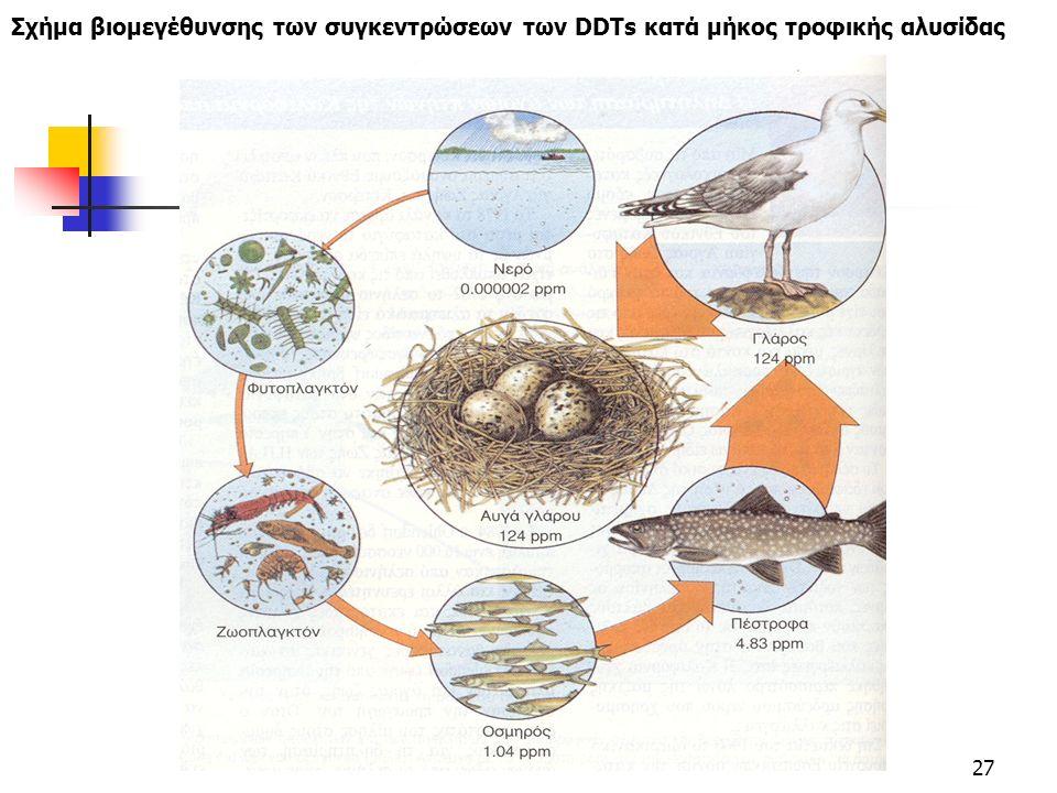 27 Σχήμα βιομεγέθυνσης των συγκεντρώσεων των DDTs κατά μήκος τροφικής αλυσίδας