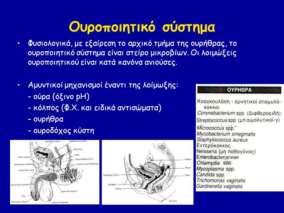 Ουροποιητικό σύστημα Φυσιολογικά, με εξαίρεση το αρχικό τμήμα της ουρήθρας, το ουροποιητικό σύστημα είναι στείρο μικροβίων.