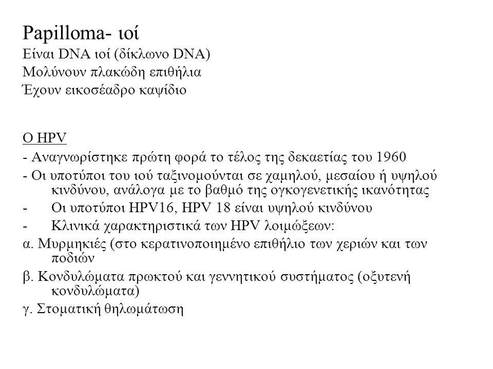 Papilloma- ιοί Είναι DNA ιοί (δίκλωνο DNA) Μολύνουν πλακώδη επιθήλια Έχουν εικοσέαδρο καψίδιο Ο HPV - Αναγνωρίστηκε πρώτη φορά το τέλος της δεκαετίας του 1960 - Οι υποτύποι του ιού ταξινομούνται σε χαμηλού, μεσαίου ή υψηλού κινδύνου, ανάλογα με το βαθμό της ογκογενετικής ικανότητας -Οι υποτύποι HPV16, HPV 18 είναι υψηλού κινδύνου -Κλινικά χαρακτηριστικά των HPV λοιμώξεων: α.