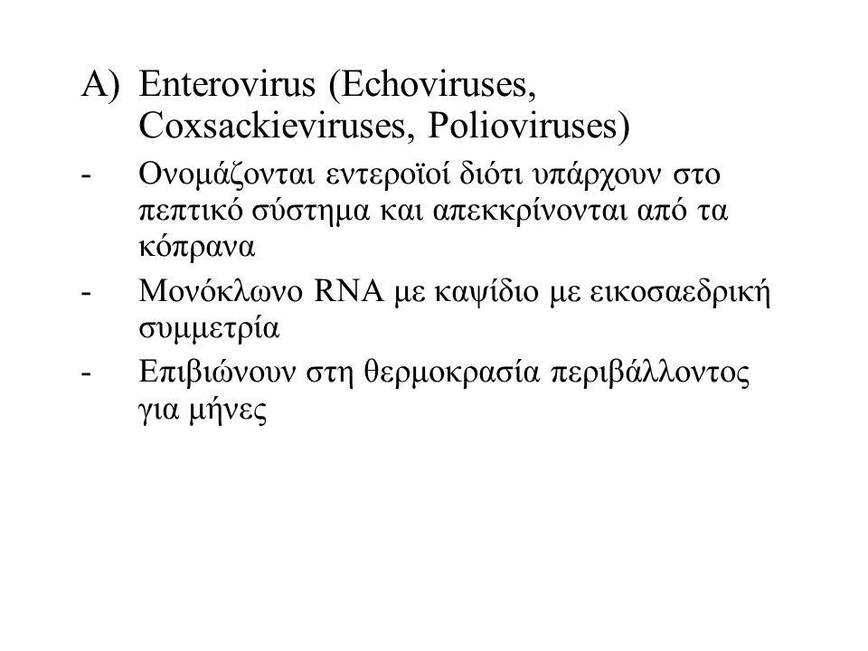 A)Enterovirus (Echoviruses, Coxsackieviruses, Polioviruses) -Ονομάζονται εντεροϊοί διότι υπάρχουν στο πεπτικό σύστημα και απεκκρίνονται από τα κόπρανα -Μονόκλωνο RNA με καψίδιο με εικοσαεδρική συμμετρία -Επιβιώνουν στη θερμοκρασία περιβάλλοντος για μήνες
