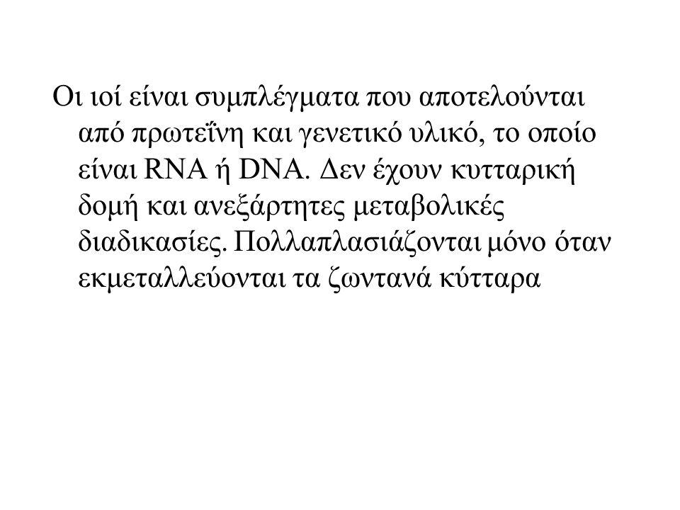 Οι ιοί είναι συμπλέγματα που αποτελούνται από πρωτεΐνη και γενετικό υλικό, το οποίο είναι RNA ή DNA.