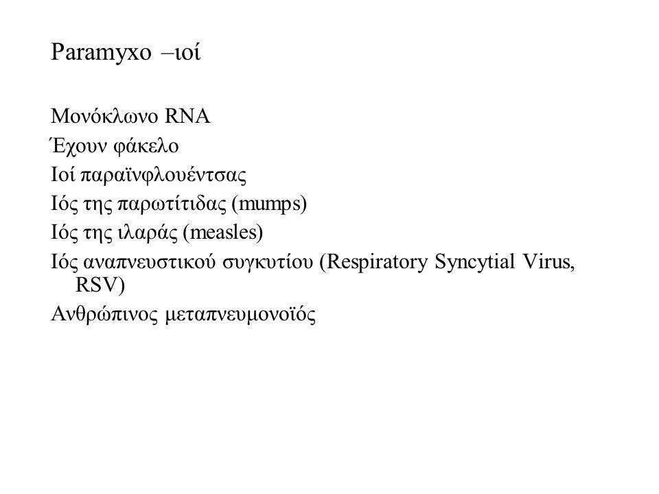 Paramyxo –ιοί Μονόκλωνο RNA Έχουν φάκελο Ιοί παραϊνφλουέντσας Ιός της παρωτίτιδας (mumps) Ιός της ιλαράς (measles) Ιός αναπνευστικού συγκυτίου (Respiratory Syncytial Virus, RSV) Ανθρώπινος μεταπνευμονοϊός