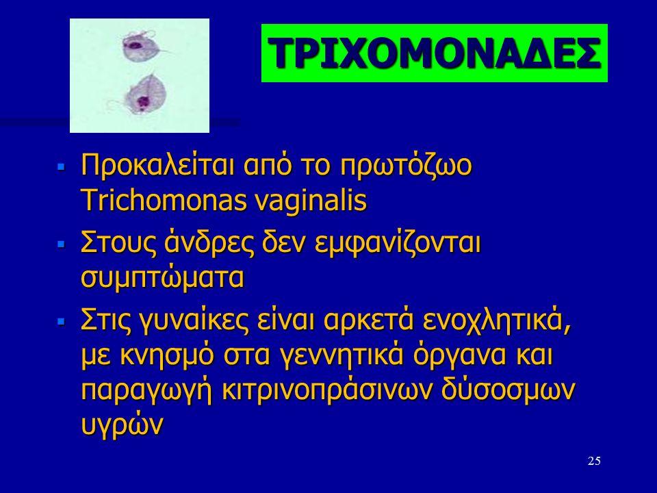  Προκαλείται από το πρωτόζωο Trichomonas vaginalis  Στους άνδρες δεν εμφανίζονται συμπτώματα  Στις γυναίκες είναι αρκετά ενοχλητικά, με κνησμό στα γεννητικά όργανα και παραγωγή κιτρινοπράσινων δύσοσμων υγρών 25 ΤΡΙΧΟΜΟΝΑΔΕΣ