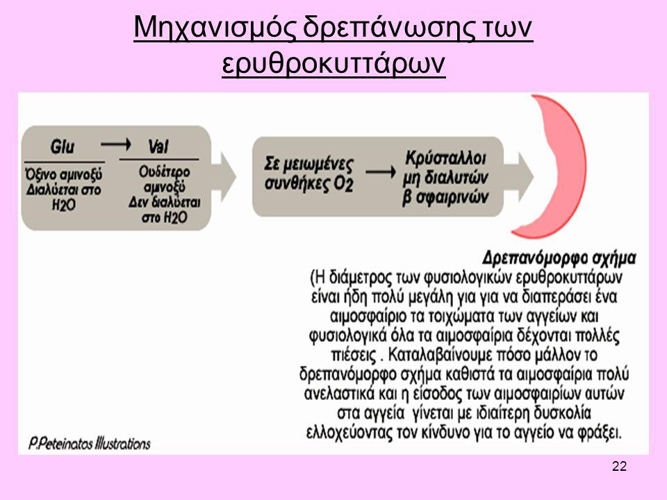 22 Μηχανισμός δρεπάνωσης των ερυθροκυττάρων