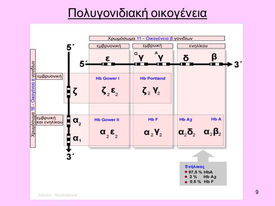 9 Πολυγονιδιακή οικογένεια