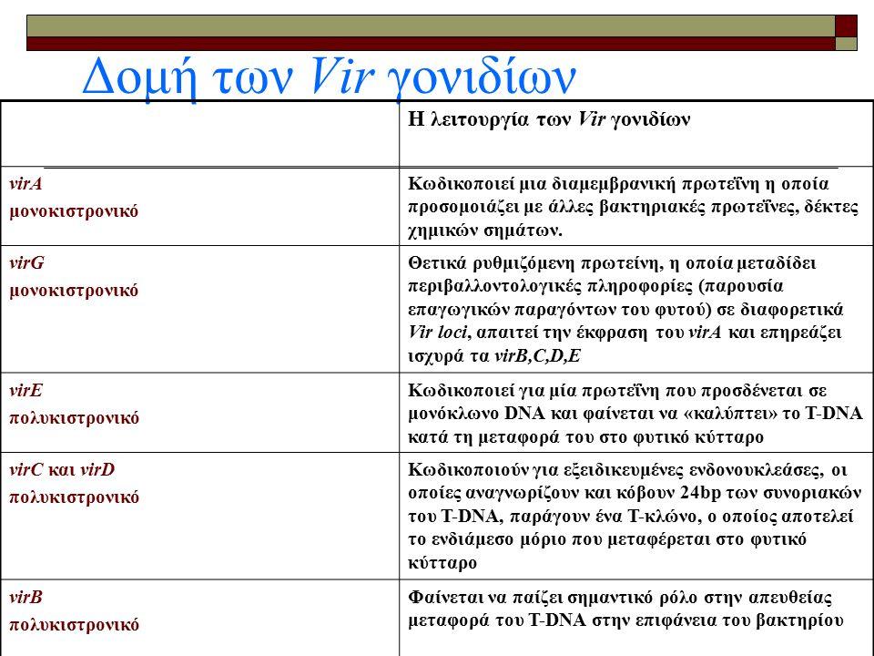  2.2gr MS θρεπτικό διάλυμα αλάτων  1Χ Β5 βιταμίνες  50gr σακχαρόζη,  0,5 MES  Ρύθμιση pΗ 5,7 (με ΚΟΗ) και αποστείρωση  0,01mg βενζάμινο πουρίνη ΒΑΡ (έχει δράση κυτοκινίνης)  200μl Silwet L-77 Βήματα του μετασχηματισμού φυτών Arabidopsis thaliana με τη μέθοδο εμβάπτισης ανθέων (Floral dip) To διάλυμα του ΙΜ (1lt)