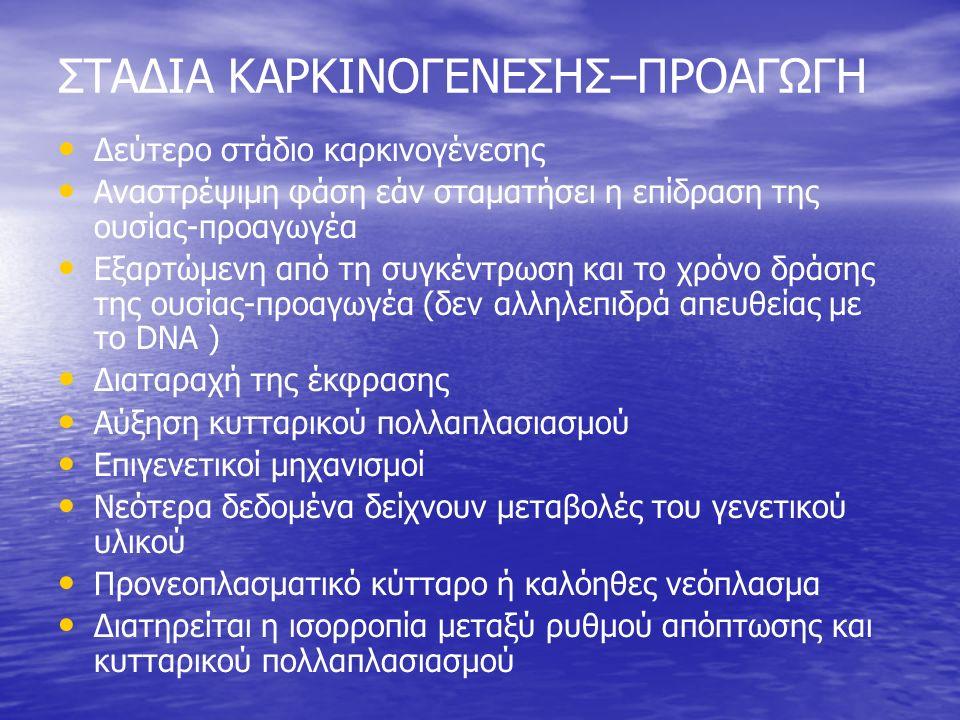 ΣΤΑΔΙΑ ΚΑΡΚΙΝΟΓΕΝΕΣΗΣ–ΠΡΟΑΓΩΓΗ Δεύτερο στάδιο καρκινογένεσης Αναστρέψιμη φάση εάν σταματήσει η επίδραση της ουσίας-προαγωγέα Εξαρτώμενη από τη συγκέντρωση και το χρόνο δράσης της ουσίας-προαγωγέα (δεν αλληλεπιδρά απευθείας με το DNA ) Διαταραχή της έκφρασης Αύξηση κυτταρικού πολλαπλασιασμού Επιγενετικοί μηχανισμοί Νεότερα δεδομένα δείχνουν μεταβολές του γενετικού υλικού Προνεοπλασματικό κύτταρο ή καλόηθες νεόπλασμα Διατηρείται η ισορροπία μεταξύ ρυθμού απόπτωσης και κυτταρικού πολλαπλασιασμού
