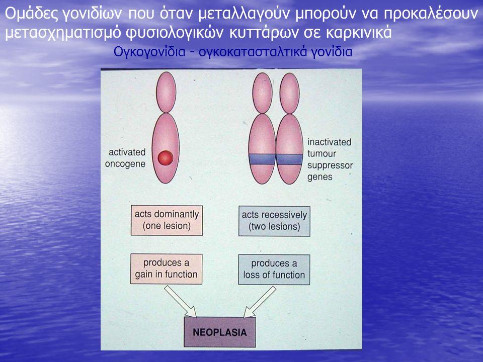 Ογκογονίδια - ογκοκατασταλτικά γονίδια Ομάδες γονιδίων που όταν μεταλλαγούν μπορούν να προκαλέσουν μετασχηματισμό φυσιολογικών κυττάρων σε καρκινικά