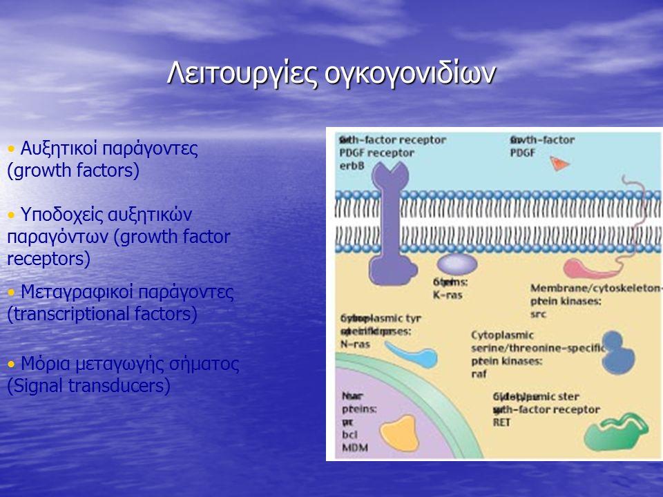 Λειτουργίες ογκογονιδίων Αυξητικοί παράγοντες (growth factors) Υποδοχείς αυξητικών παραγόντων (growth factor receptors) Μεταγραφικοί παράγοντες (trans