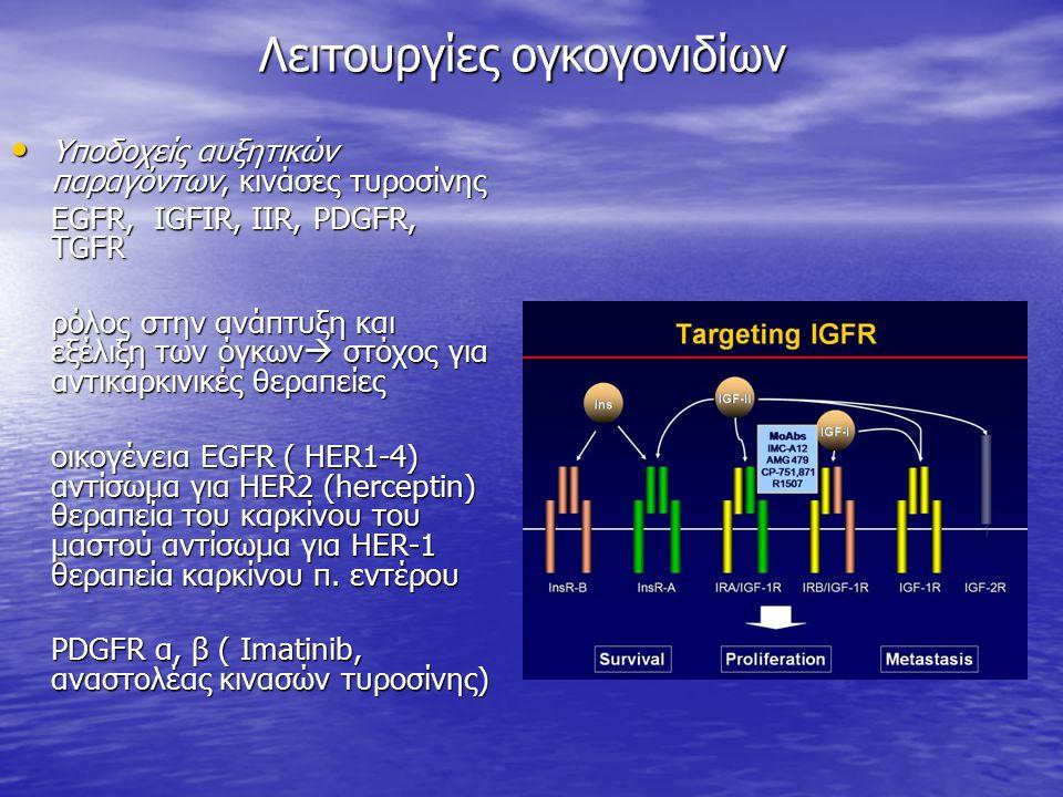 Λειτουργίες ογκογονιδίων Υποδοχείς αυξητικών παραγόντων, κινάσες τυροσίνης Υποδοχείς αυξητικών παραγόντων, κινάσες τυροσίνης EGFR, IGFIR, IIR, PDGFR, TGFR ρόλος στην ανάπτυξη και εξέλιξη των όγκων  στόχος για αντικαρκινικές θεραπείες οικογένεια EGFR ( ΗΕR1-4) αντίσωμα για HER2 (herceptin) θεραπεία του καρκίνου του μαστού αντίσωμα για ΗΕR-1 θεραπεία καρκίνου π.