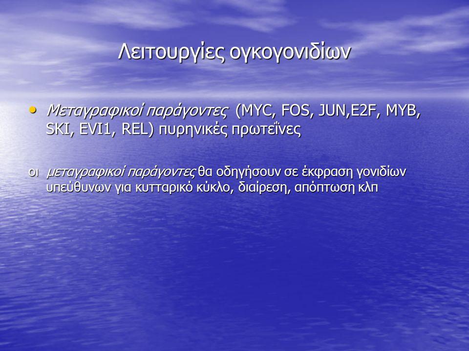 Λειτουργίες ογκογονιδίων Μεταγραφικοί παράγοντες (MYC, FOS, JUN,Ε2F, MYB, SKI, EVI1, REL) πυρηνικές πρωτεΐνες Μεταγραφικοί παράγοντες (MYC, FOS, JUN,Ε
