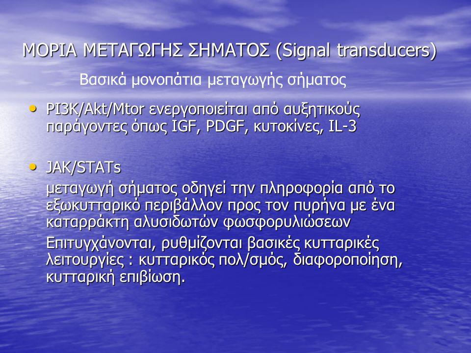 ΜΟΡΙΑ ΜΕΤΑΓΩΓΗΣ ΣΗΜΑΤΟΣ (Signal transducers) ΜΟΡΙΑ ΜΕΤΑΓΩΓΗΣ ΣΗΜΑΤΟΣ (Signal transducers) PI3K/Akt/Mtor ενεργοποιείται από αυξητικούς παράγοντες όπως IGF, PDGF, κυτοκίνες, IL-3 PI3K/Akt/Mtor ενεργοποιείται από αυξητικούς παράγοντες όπως IGF, PDGF, κυτοκίνες, IL-3 JAK/STATs JAK/STATs μεταγωγή σήματος οδηγεί την πληροφορία από το εξωκυτταρικό περιβάλλον προς τον πυρήνα με ένα καταρράκτη αλυσιδωτών φωσφορυλιώσεων Επιτυγχάνονται, ρυθμίζονται βασικές κυτταρικές λειτουργίες : κυτταρικός πολ/σμός, διαφοροποίηση, κυτταρική επιβίωση.