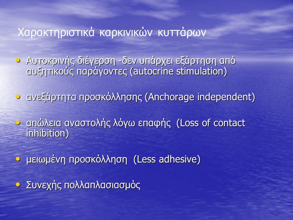 Χαρακτηριστικά καρκινικών κυττάρων Αυτοκρινής διέγερση -δεν υπάρχει εξάρτηση από αυξητικούς παράγοντες (autocrine stimulation) Αυτοκρινής διέγερση -δεν υπάρχει εξάρτηση από αυξητικούς παράγοντες (autocrine stimulation) ανεξάρτητα προσκόλλησης (Anchorage independent) ανεξάρτητα προσκόλλησης (Anchorage independent) απώλεια αναστολής λόγω επαφής (Loss of contact inhibition) απώλεια αναστολής λόγω επαφής (Loss of contact inhibition) μειωμένη προσκόλληση (Less adhesive) μειωμένη προσκόλληση (Less adhesive) Συνεχής πολλαπλασιασμός Συνεχής πολλαπλασιασμός