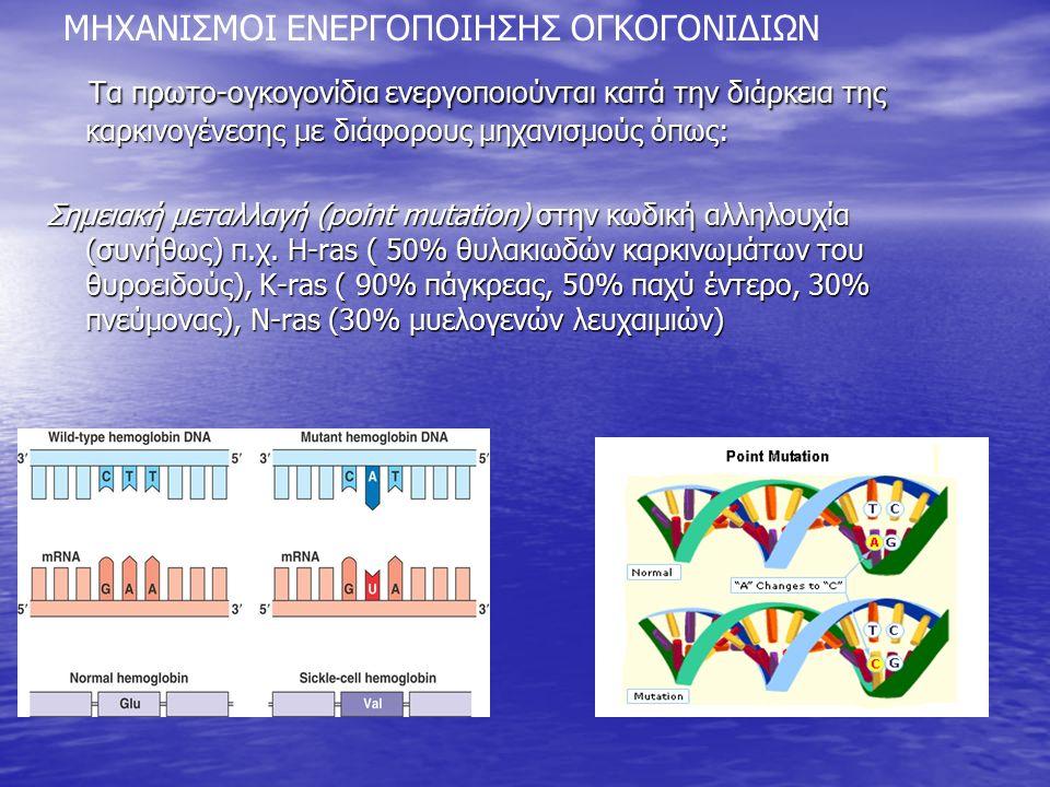 Τα πρωτο-ογκογονίδια ενεργοποιούνται κατά την διάρκεια της καρκινογένεσης με διάφορους μηχανισμούς όπως: Τα πρωτο-ογκογονίδια ενεργοποιούνται κατά την