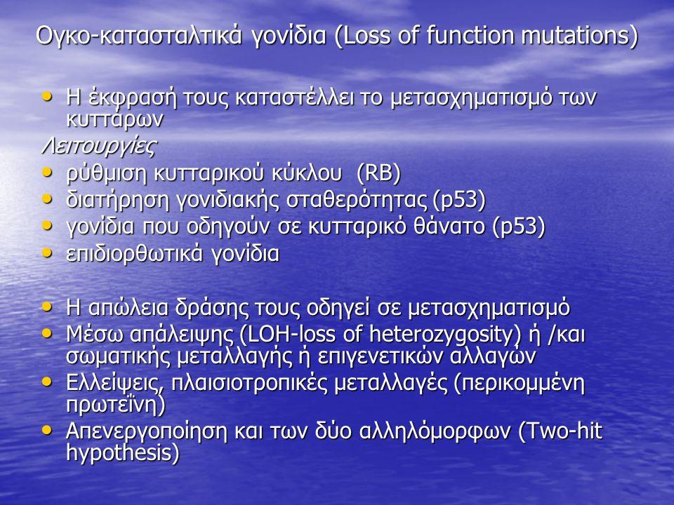 Ογκο-κατασταλτικά γονίδια (Loss of function mutations) Η έκφρασή τους καταστέλλει το μετασχηματισμό των κυττάρων Η έκφρασή τους καταστέλλει το μετασχηματισμό των κυττάρωνΛειτουργίες ρύθμιση κυτταρικού κύκλου (RB) ρύθμιση κυτταρικού κύκλου (RB) διατήρηση γονιδιακής σταθερότητας (p53) διατήρηση γονιδιακής σταθερότητας (p53) γονίδια που οδηγούν σε κυτταρικό θάνατο (p53) γονίδια που οδηγούν σε κυτταρικό θάνατο (p53) επιδιορθωτικά γονίδια επιδιορθωτικά γονίδια Η απώλεια δράσης τους οδηγεί σε μετασχηματισμό Η απώλεια δράσης τους οδηγεί σε μετασχηματισμό Μέσω απάλειψης (LOH-loss of heterozygosity) ή /και σωματικής μεταλλαγής ή επιγενετικών αλλαγών Μέσω απάλειψης (LOH-loss of heterozygosity) ή /και σωματικής μεταλλαγής ή επιγενετικών αλλαγών Ελλείψεις, πλαισιοτροπικές μεταλλαγές (περικομμένη πρωτεΐνη) Ελλείψεις, πλαισιοτροπικές μεταλλαγές (περικομμένη πρωτεΐνη) Απενεργοποίηση και των δύο αλληλόμορφων (Two-hit hypothesis) Απενεργοποίηση και των δύο αλληλόμορφων (Two-hit hypothesis)