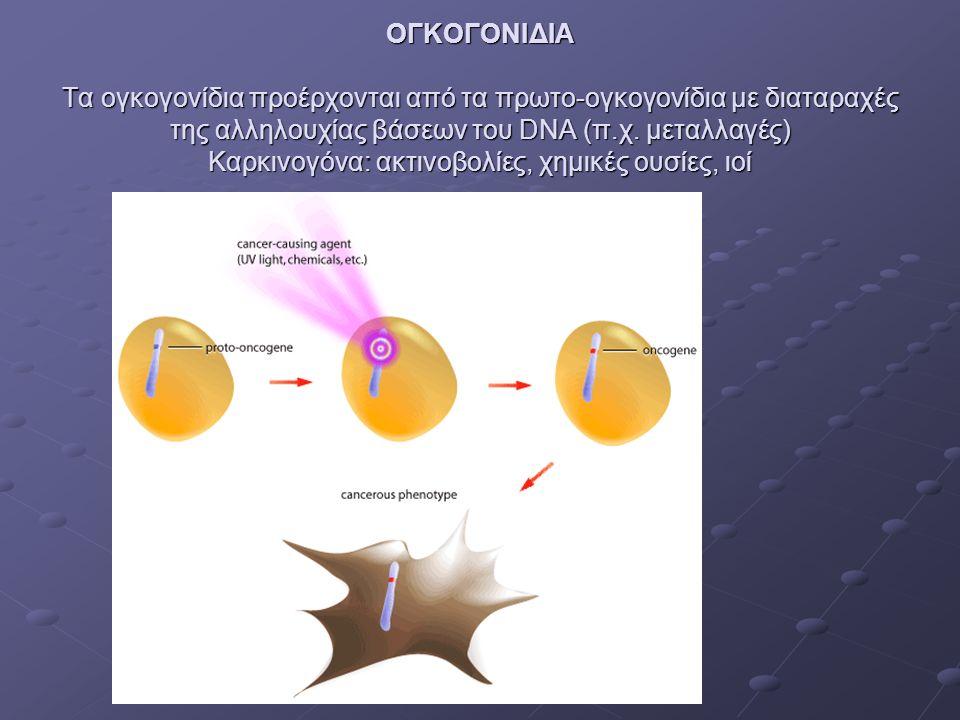ΟΓΚΟΓΟΝΙΔΙΑ Τα ογκογονίδια προέρχονται από τα πρωτο-ογκογονίδια με διαταραχές της αλληλουχίας βάσεων του DNA (π.χ.