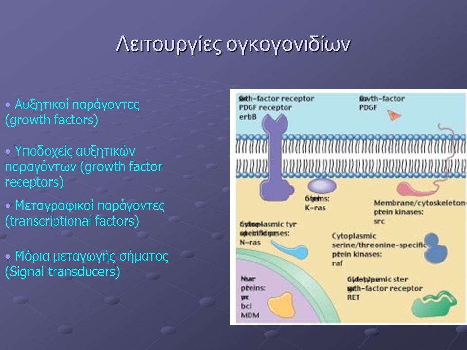 Λειτουργίες ογκογονιδίων Αυξητικοί παράγοντες (growth factors) Υποδοχείς αυξητικών παραγόντων (growth factor receptors) Μεταγραφικοί παράγοντες (transcriptional factors) Μόρια μεταγωγής σήματος (Signal transducers)