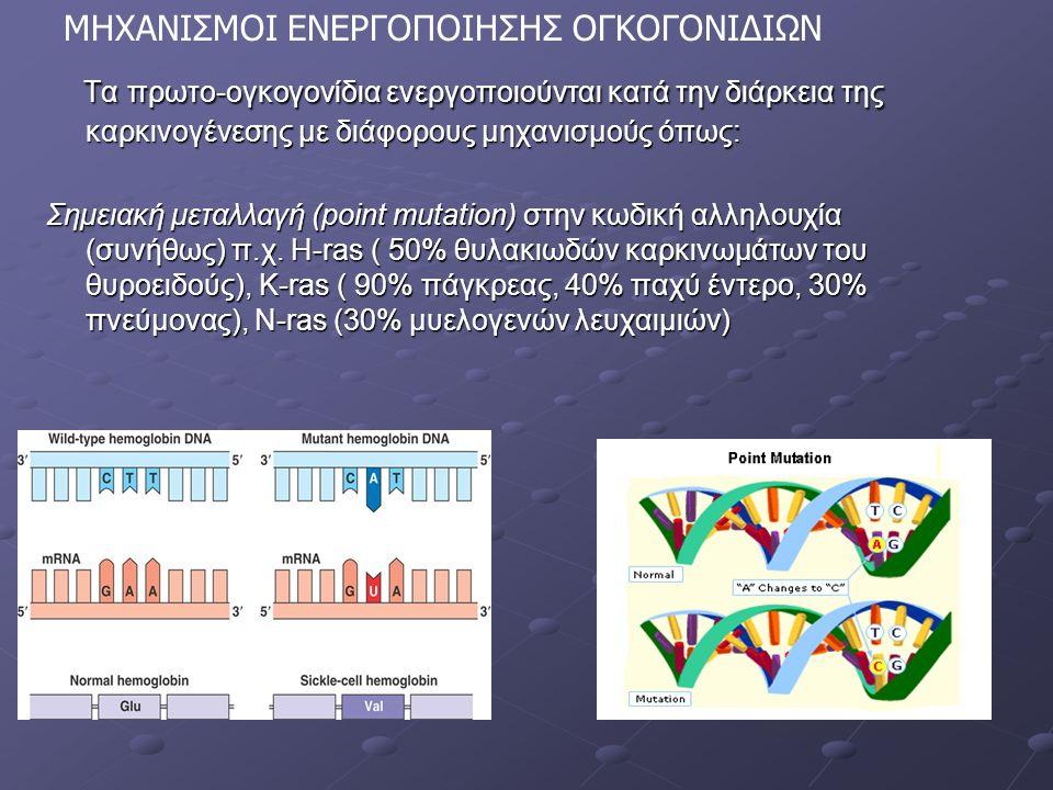 Τα πρωτο-ογκογονίδια ενεργοποιούνται κατά την διάρκεια της καρκινογένεσης με διάφορους μηχανισμούς όπως: Τα πρωτο-ογκογονίδια ενεργοποιούνται κατά την διάρκεια της καρκινογένεσης με διάφορους μηχανισμούς όπως: Σημειακή μεταλλαγή (point mutation) στην κωδική αλληλουχία (συνήθως) π.χ.