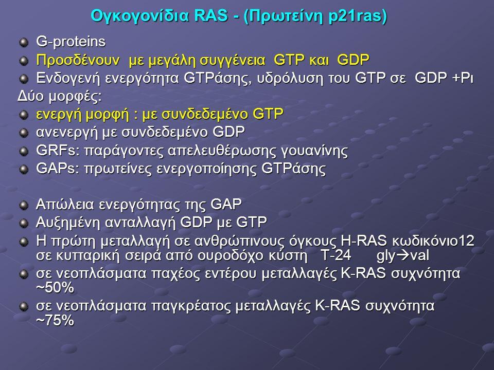 Ογκογονίδια RAS - (Πρωτείνη p21ras) G-proteins Προσδένουν με μεγάλη συγγένεια GTP και GDP Ενδογενή ενεργότητα GTPάσης, υδρόλυση του GTP σε GDP +Pι Δύο μορφές: ενεργή μορφή : με συνδεδεμένο GTP ανενεργή με συνδεδεμένο GDP GRFs: παράγοντες απελευθέρωσης γουανίνης GAPs: πρωτείνες ενεργοποίησης GTPάσης Απώλεια ενεργότητας της GAP Αυξημένη ανταλλαγή GDP με GΤP Η πρώτη μεταλλαγή σε ανθρώπινους όγκους H-RAS κωδικόνιο12 σε κυτταρική σειρά από ουροδόχο κύστη Τ-24 gly  val σε νεοπλάσματα παχέος εντέρου μεταλλαγές K-RAS συχνότητα ~50% σε νεοπλάσματα παγκρέατος μεταλλαγές K-RAS συχνότητα ~75%