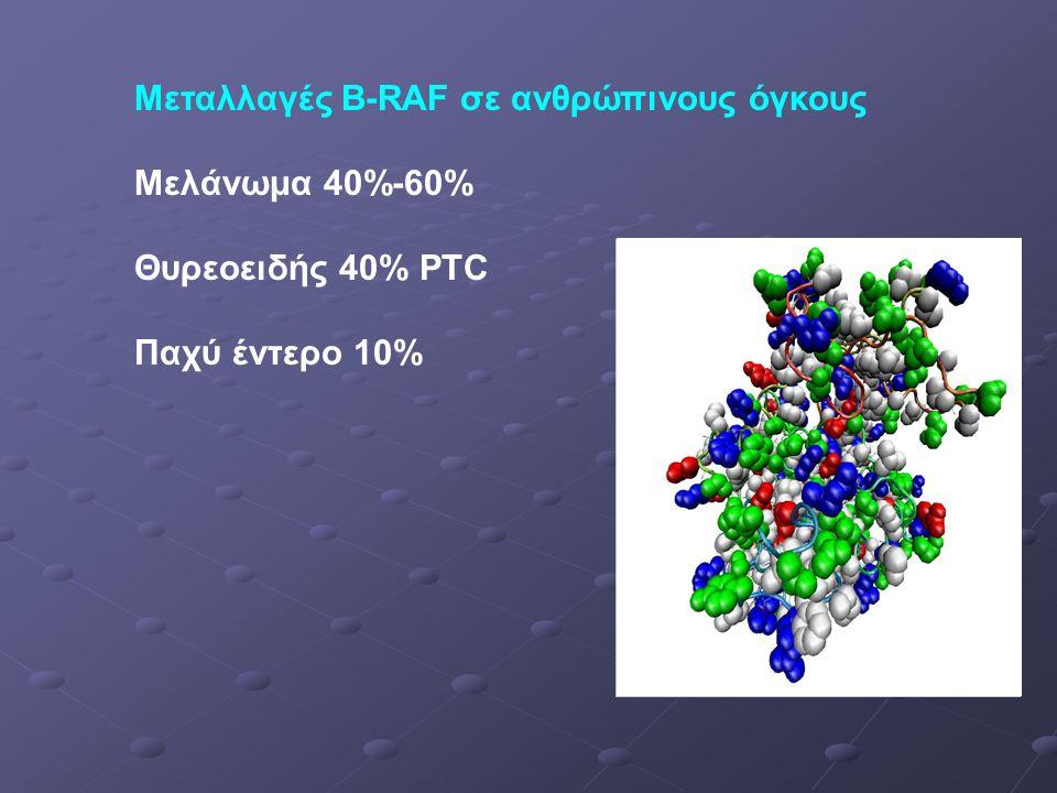 Μεταλλαγές B-RAF σε ανθρώπινους όγκους Μελάνωμα 40%-60% Θυρεοειδής 40% PTC Παχύ έντερο 10%