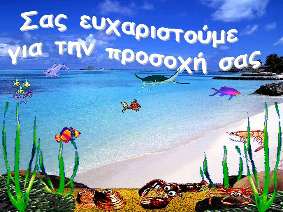 Επιπρόσθετες δραστηριότητες Το καράβι της Κερύνειας στα πλαίσια του «Δεν Ξεχνώ» Αξιοποίηση του τραγουδιού «Καράβι, καραβάκι» Έρευνα από τα παιδιά για τη θάλασσα και τα καράβια Επίσκεψη σε πλοίο και συνέντευξη από καπετάνιο Εικονόγραμμα της θάλασσας στο Kidspiration