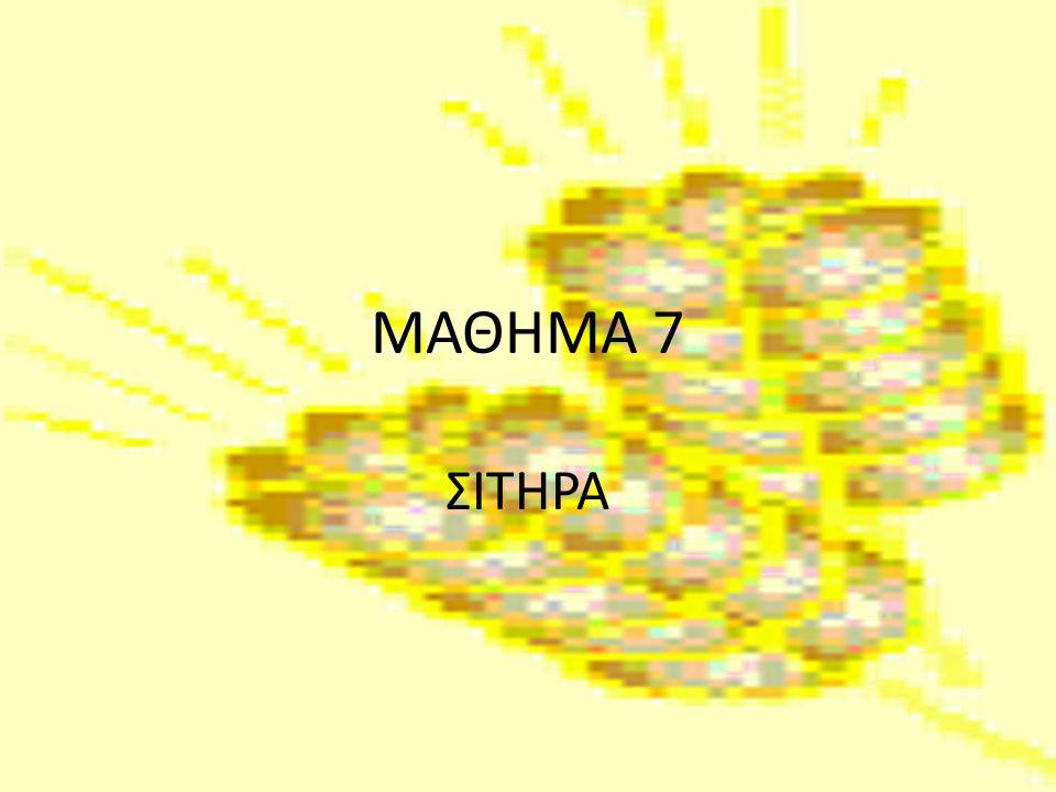 ΜΑΘΗΜΑ 7 ΣΙΤΗΡΑ