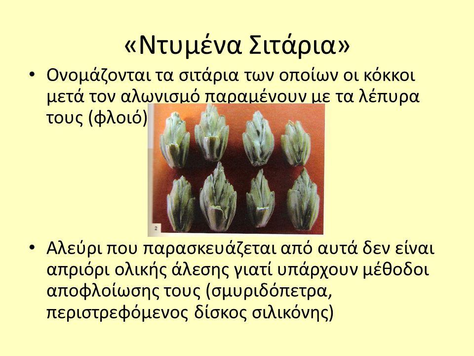 «Ντυμένα Σιτάρια» Ονομάζονται τα σιτάρια των οποίων οι κόκκοι μετά τον αλωνισμό παραμένουν με τα λέπυρα τους (φλοιό) Αλεύρι που παρασκευάζεται από αυτά δεν είναι απριόρι ολικής άλεσης γιατί υπάρχουν μέθοδοι αποφλοίωσης τους (σμυριδόπετρα, περιστρεφόμενος δίσκος σιλικόνης)
