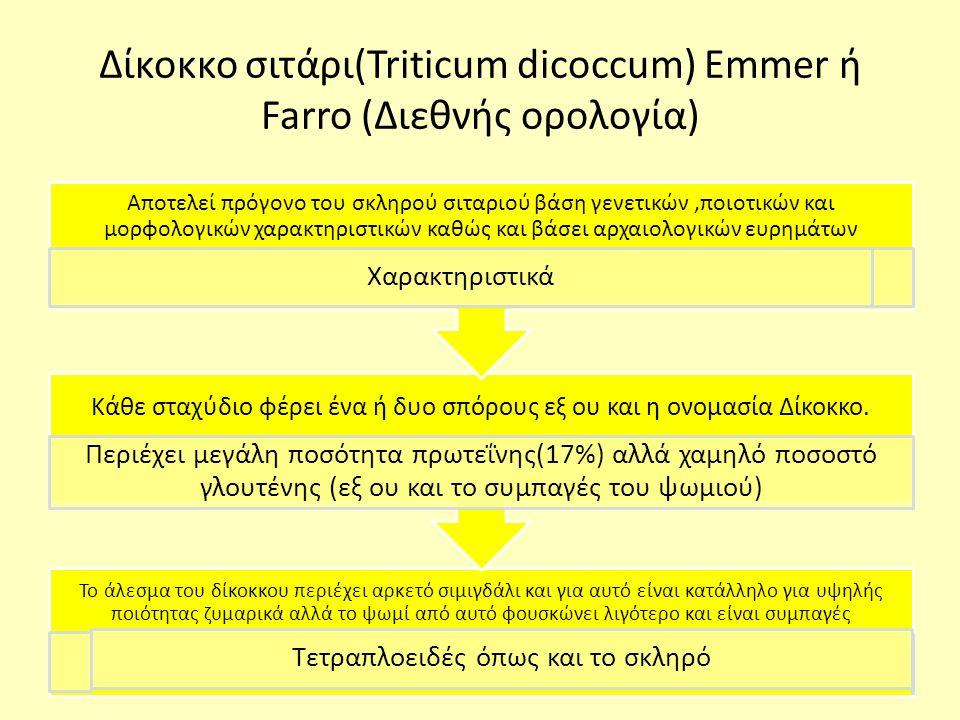 Δίκοκκο σιτάρι(Triticum dicoccum) Emmer ή Farro (Διεθνής ορολογία) Το άλεσμα του δίκοκκου περιέχει αρκετό σιμιγδάλι και για αυτό είναι κατάλληλο για υψηλής ποιότητας ζυμαρικά αλλά το ψωμί από αυτό φουσκώνει λιγότερο και είναι συμπαγές Τετραπλοειδές όπως και το σκληρό Κάθε σταχύδιο φέρει ένα ή δυο σπόρους εξ ου και η ονομασία Δίκοκκο.