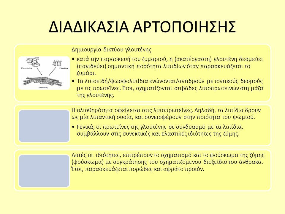 ΔΙΑΔΙΚΑΣΙΑ ΑΡΤΟΠΟΙΗΣΗΣ Δημιουργία δικτύου γλουτένης κατά την παρασκευή του ζυμαριού, η (ακατέργαστη) γλουτένη δεσμεύει (παγιδεύει) σημαντική ποσότητα λιπιδίων όταν παρασκευάζεται το ζυμάρι.