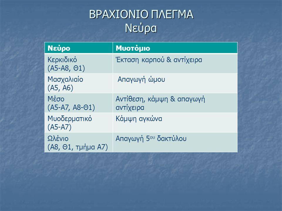ΒΡΑΧΙΟΝΙΟ ΠΛΕΓΜΑ Νεύρα ΝεύροΜυοτόμιο Κερκιδικό (Α5-Α8, Θ1) Έκταση καρπού & αντίχειρα Μασχαλιαίο (Α5, Α6) Απαγωγή ώμου Μέσο (Α5-Α7, Α8-Θ1) Αντίθεση, κά