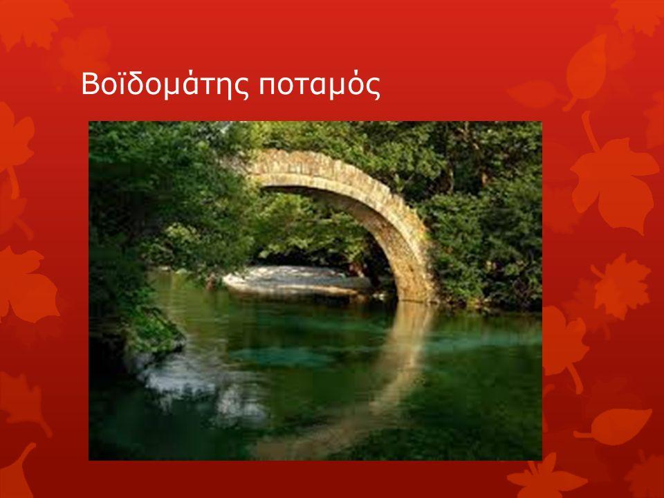 Βοϊδομάτης ποταμός