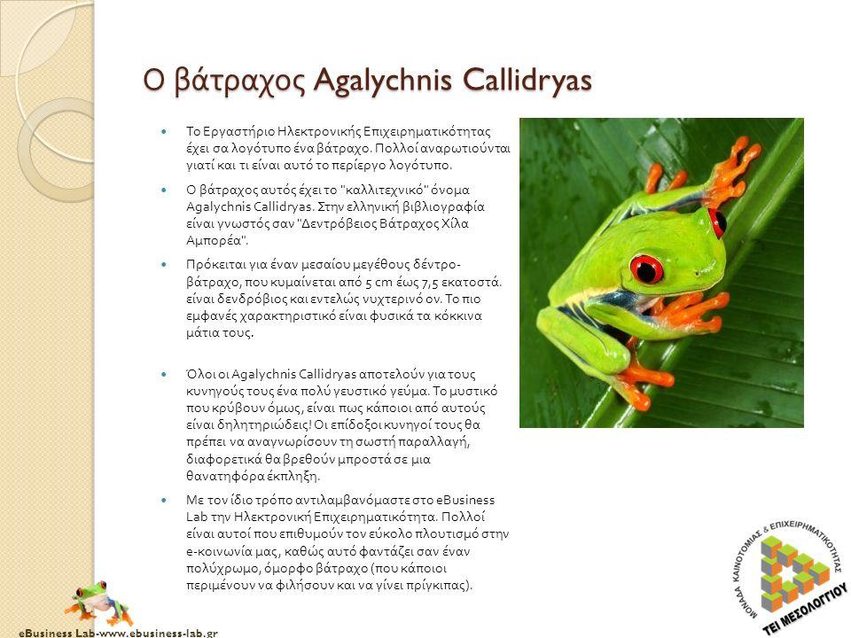 eBusiness Lab-www.ebusiness-lab.gr Ο βάτραχος Agalychnis Callidryas Το Εργαστήριο Ηλεκτρονικής Επιχειρηματικότητας έχει σα λογότυπο ένα βάτραχο.