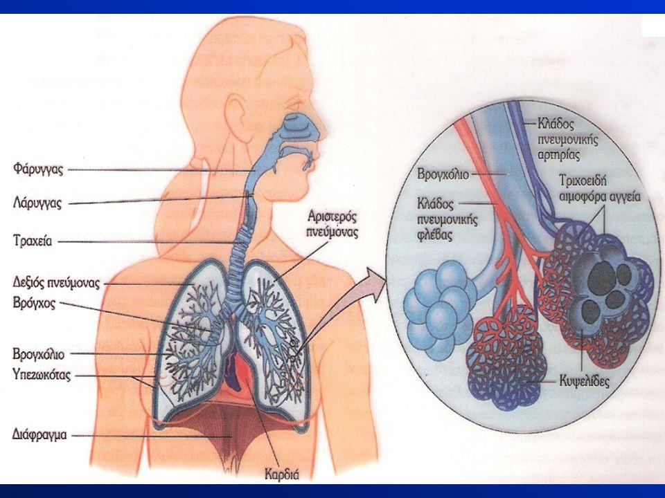 Το ανώτερο αναπνευστικό σύστημα διαθέτει ανατομικούς φραγμούς που λειτουργούν ως άμυνα έναντι των παθογόνων μικροβίων που μεταδίδονται αερογενώς.