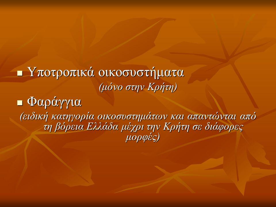 Υποτροπικά οικοσυστήματα Υποτροπικά οικοσυστήματα (μόνο στην Κρήτη) Φαράγγια Φαράγγια (ειδική κατηγορία οικοσυστημάτων και απαντώνται από τη βόρεια Ελ