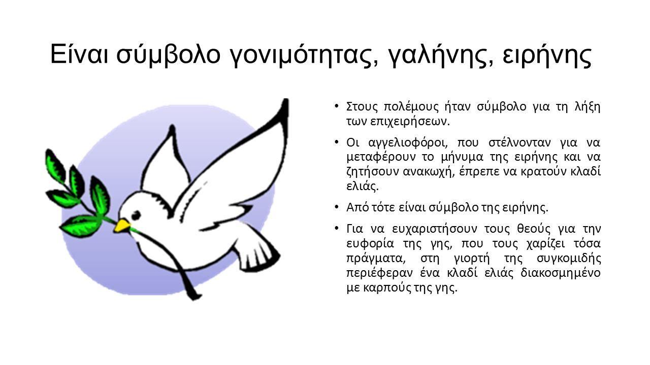 Είναι σύμβολο γονιμότητας, γαλήνης, ειρήνης Στους πολέμους ήταν σύμβολο για τη λήξη των επιχειρήσεων. Οι αγγελιοφόροι, που στέλνονταν για να μεταφέρου
