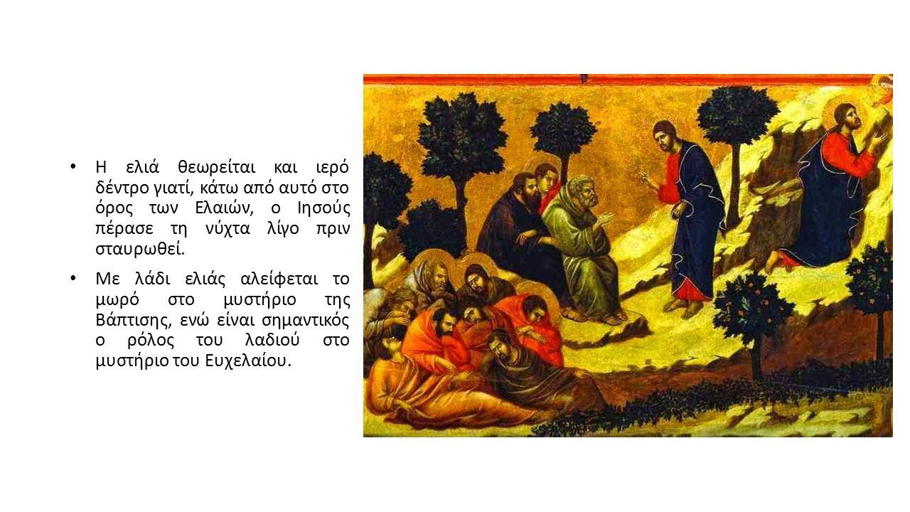 Η ελιά θεωρείται και ιερό δέντρο γιατί, κάτω από αυτό στο όρος των Ελαιών, ο Ιησούς πέρασε τη νύχτα λίγο πριν σταυρωθεί. Με λάδι ελιάς αλείφεται το μω