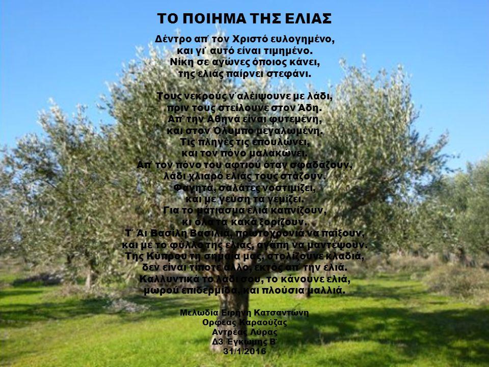 ΤΟ ΠΟΙΗΜΑ ΤΗΣ ΕΛΙΑΣ Δέντρο απ΄ τον Χριστό ευλογημένο, και γι΄ αυτό είναι τιμημένο. Νίκη σε αγώνες όποιος κάνει, της ελιάς παίρνει στεφάνι. Τους νεκρού