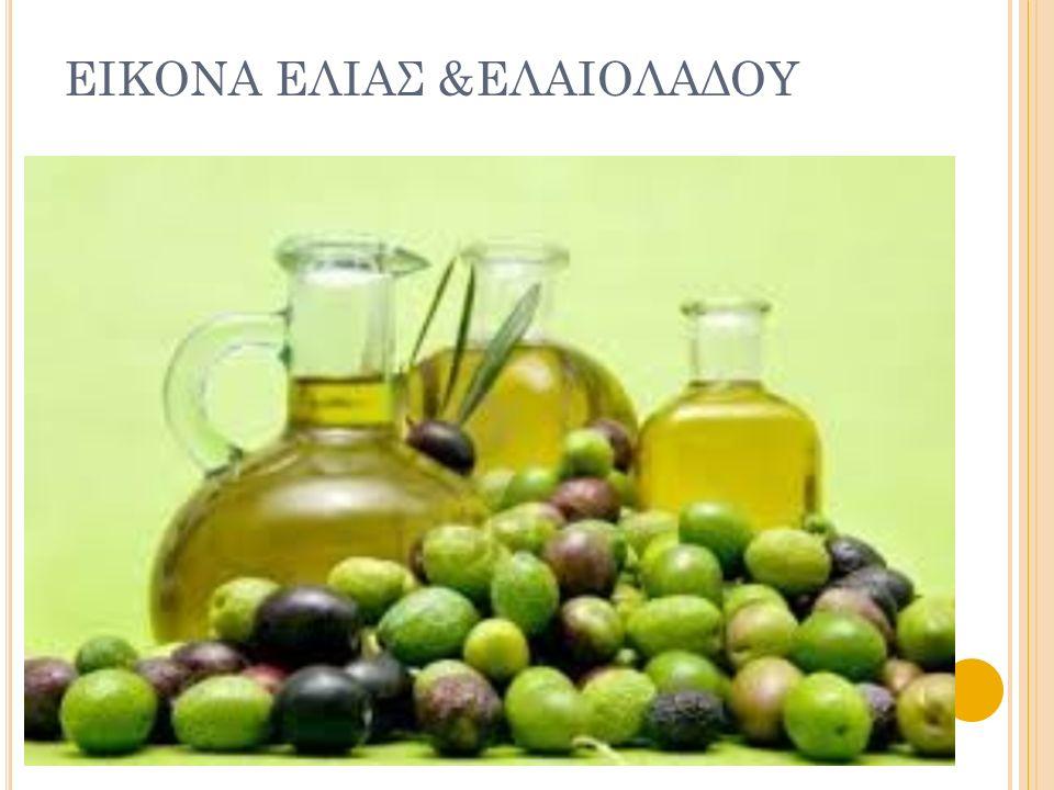 ΕΙΚΟΝΑ ΕΛΙΑΣ &ΕΛΑΙΟΛΑΔΟΥ