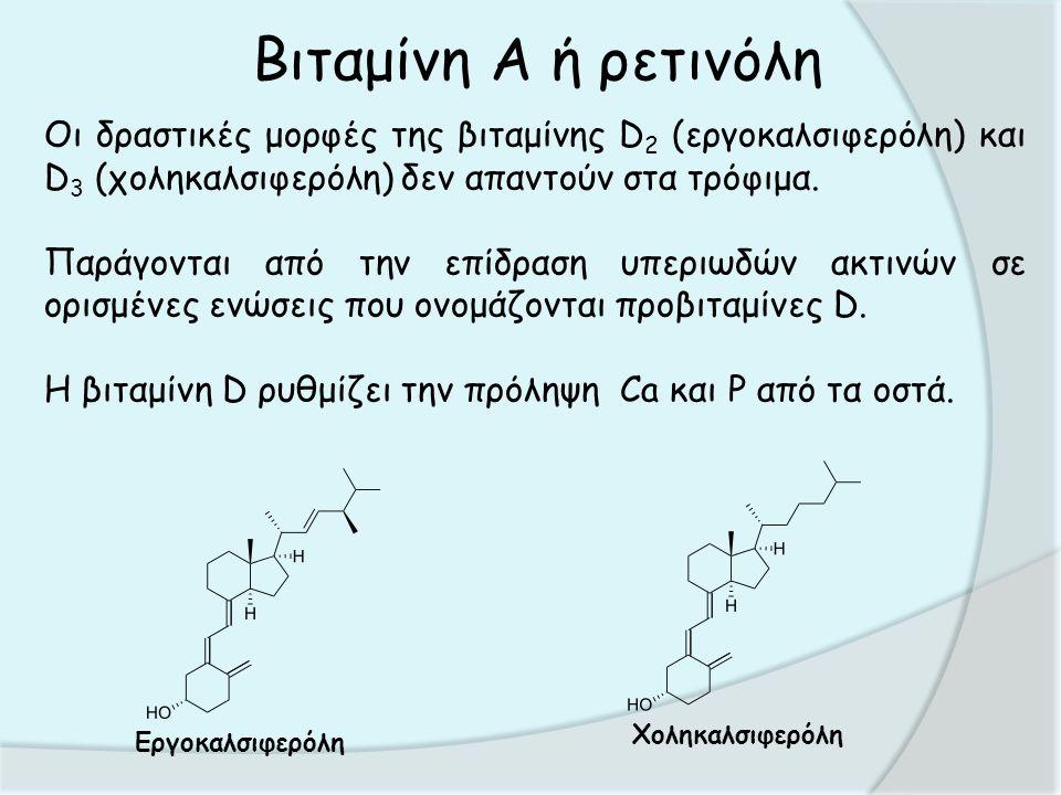 Βιταμίνη Α ή ρετινόλη Οι δραστικές μορφές της βιταμίνης D 2 (εργοκαλσιφερόλη) και D 3 (χοληκαλσιφερόλη) δεν απαντούν στα τρόφιμα.
