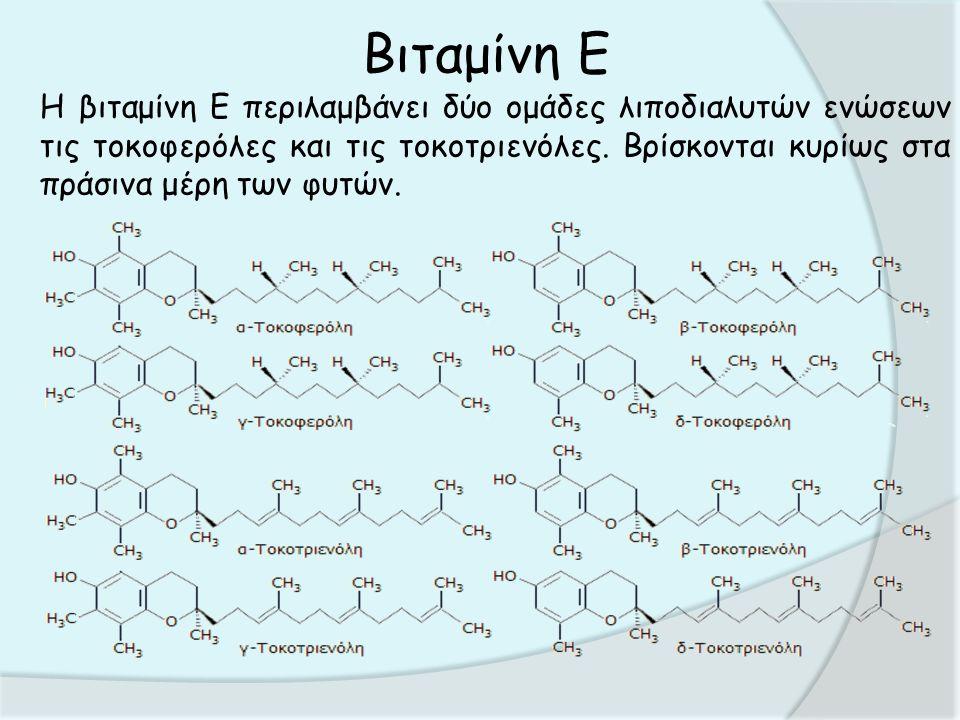 Βιταμίνη Ε Δεν μπορούν να συντεθούν στον οργανισμό των ανθρώπων ή των ζώων γι' αυτό πρέπει να λαμβάνονται από τις τροφές.