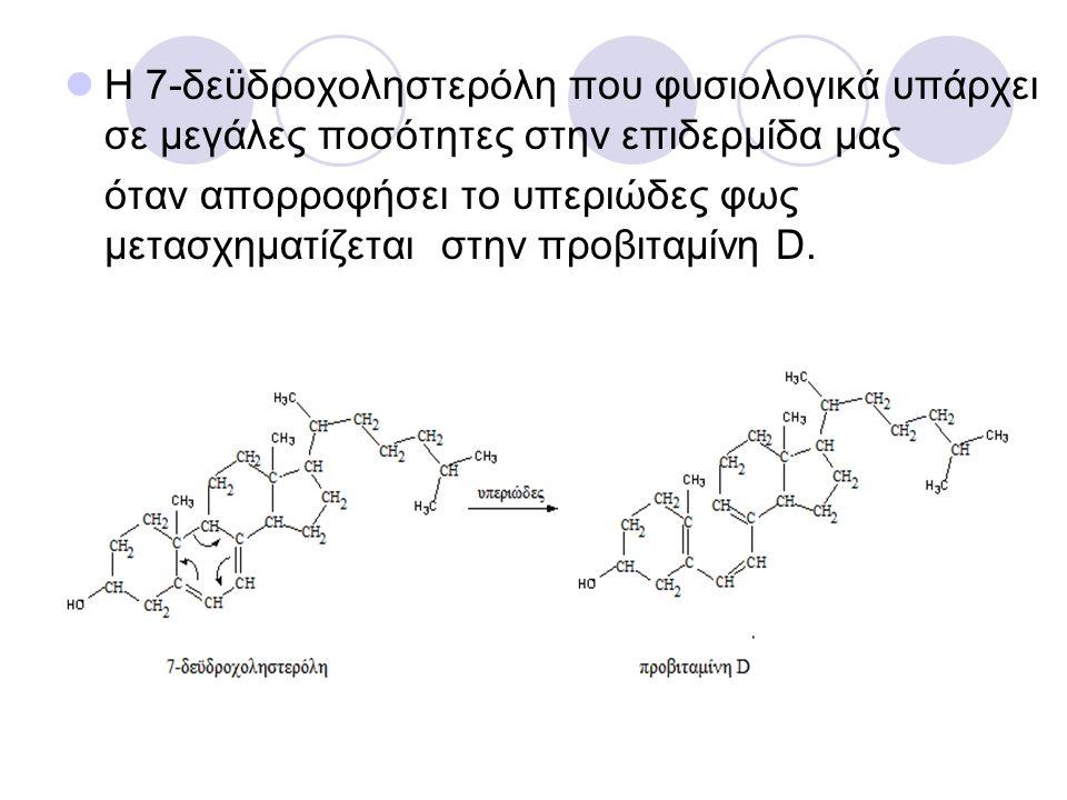 Η 7-δεϋδροχοληστερόλη που φυσιολογικά υπάρχει σε μεγάλες ποσότητες στην επιδερμίδα μας όταν απορροφήσει το υπεριώδες φως μετασχηματίζεται στην προβιταμίνη D.