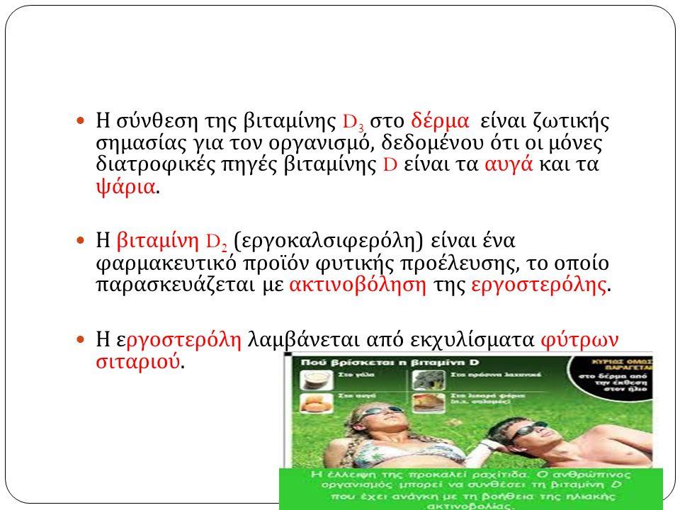 Η σύνθεση της βιταμίνης D 3 στο δέρμα είναι ζωτικής σημασίας για τον οργανισμό, δεδομένου ότι οι μόνες διατροφικές πηγές βιταμίνης D είναι τα αυγά και