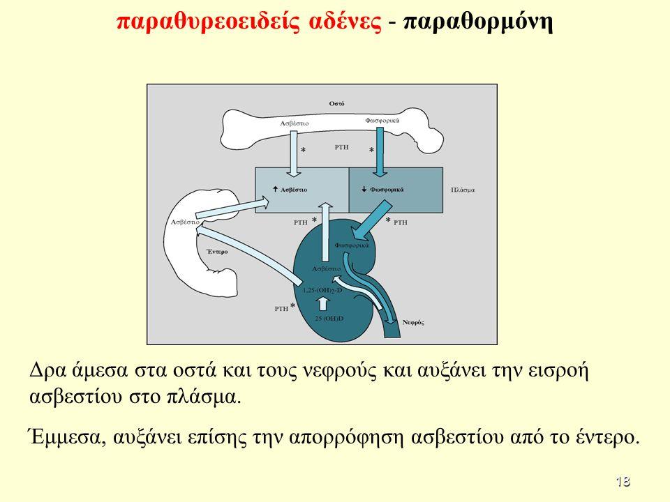 Δρα άμεσα στα οστά και τους νεφρούς και αυξάνει την εισροή ασβεστίου στο πλάσμα.
