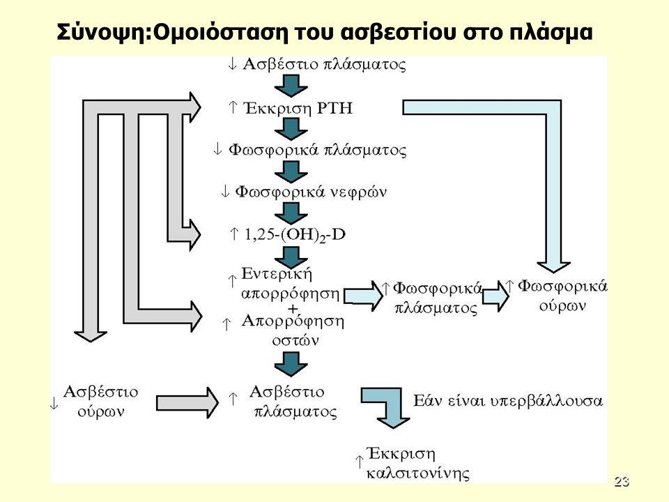 Σύνοψη:Ομοιόσταση του ασβεστίου στο πλάσμα 23