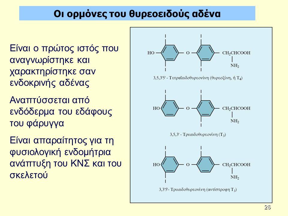 Οι ορμόνες του θυρεοειδούς αδένα Είναι ο πρώτος ιστός που αναγνωρίστηκε και χαρακτηρίστηκε σαν ενδοκρινής αδένας Αναπτύσσεται από ενδόδερμα του εδάφους του φάρυγγα Είναι απαραίτητος για τη φυσιολογική ενδομήτρια ανάπτυξη του ΚΝΣ και του σκελετού 26