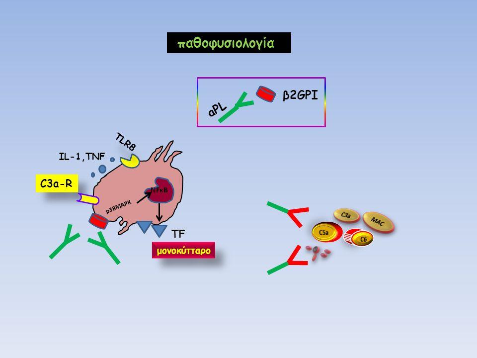 C3a-R NFκΒ p38MAPK ΤFΤF μονοκύτταρο TLR8 ΙL-1,TNF παθοφυσιολογία β2GPI aPL