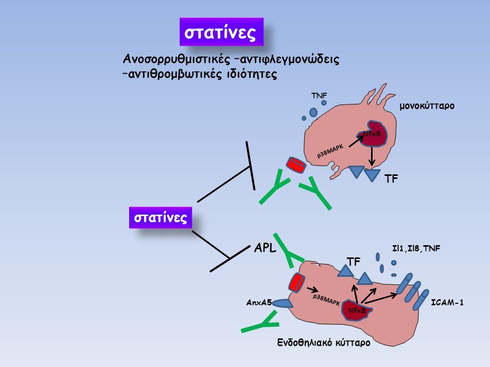 στατίνες Ανοσορρυθμιστικές –αντιφλεγμονώδεις –αντιθρομβωτικές ιδιότητες Eνδοθηλιακό κύτταρο NFκB AnxA5 p38MAPK Il1,Il8,TNF ICAM-1 ΑPL ΤFΤF NFκΒ p38MAPK ΤFΤF μονοκύτταρο TNF στατίνες