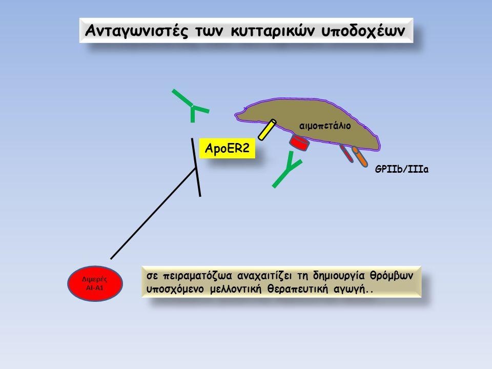 αιμοπετάλιο GPIΙb/IIIa ApoER2 Ανταγωνιστές των κυτταρικών υποδοχέων Διμερές ΑΙ-Α1 σε πειραματόζωα αναχαιτίζει τη δημιουργία θρόμβων υποσχόμενο μελλοντ