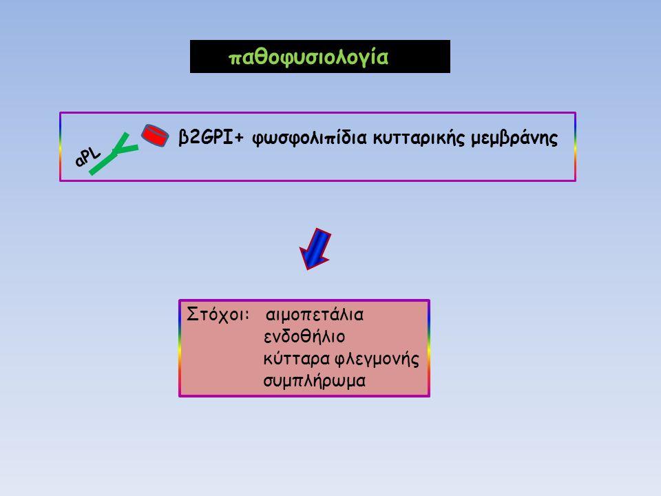 παθοφυσιολογία β2GPI+ φωσφολιπίδια κυτταρικής μεμβράνης aPL Στόχοι: αιμοπετάλια ενδοθήλιο κύτταρα φλεγμονής συμπλήρωμα